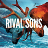 Rival Sons - Black Coffee / Long As I Can See The Light 7""